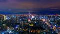 東京經典風景·遊戲中時光倒流·東京鐵塔和大城市夜景從暮光之城雷暴卡拉格雷 43403239