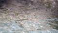 温泉の湯 スローモーション 43449811