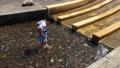 公園 川 遊び 子供 43471492