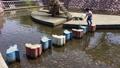 公園 川 遊び 子供 43471502