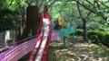 公園 滑り台 男の子 43471504