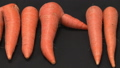 Organic carrot (slider shot) 43504872