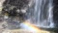 塔玛达尔瀑布 43576237