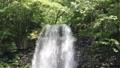 塔玛达尔瀑布 43576241