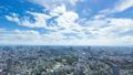 東京六本木的延時,東京廣島品川橫濱地區的廣闊景色 43626918