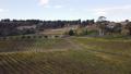 aerial view of beautiful vineyard in Yarra Valley, 43629317