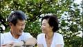 資深夫婦旅行在大樹下 43633048