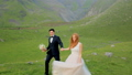 Enamored newlyweds walk in the meadow against the backdrop of beautiful mountains. 43644101