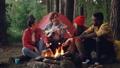 仲間 森林 林の動画 43654709