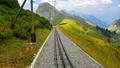 Riding the cogwheel railway from Rochers de Naye 43672814
