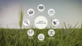 Smart agriculture farm, IoT icon on barley field 1 43677041