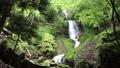 三段の滝 43701340