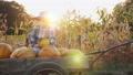 boy, cart, ride 43716574