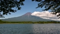富士と田貫湖 43752075