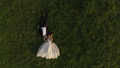 Top view of wedding couple lying on green grass and resting 43767733