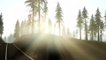 Flight Over A Railway Surrounded By Forest with Sunbeams 43818755