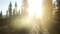 Flight Over A Railway Surrounded By Forest with Sunbeams 43824493