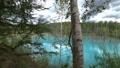 枯れた松の木が立つ幻想的な青い池の風景._6 43846569