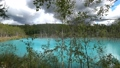 枯れた松の木が立つ幻想的な青い池の風景._5 43846571