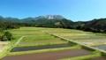 无人机鸟瞰图春天大山和稻田前进 43889748