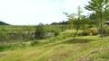 飛騨高山あららぎ公園 43931025