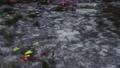 日本岐阜縣旅遊景點名稱Monaki Pond(莫奈池塘) 44025723