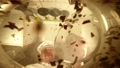 料理人 スパイス 香辛料の動画 44193926