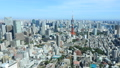Megapolis Tokyo Tokyo Tower and downtown Tokyo autumn sky clear timelapse timelapse pan 44292743