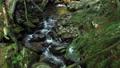 ช่องเขา,ภูเขา,ธรรมชาติ 44303416
