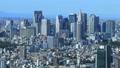 メガポリス東京 新宿高層ビル群 青空 快晴 タイムラプス パン 44315441