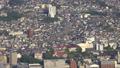 長崎市全景を俯瞰 稲佐山展望台から大浦天主堂周辺を眺望 44328346