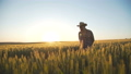 Happy farmer walks on wheat field with smile on the face. FullHD 44409066