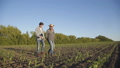 Father and son walking on the corn field, deciding the issues with tablet 44409072