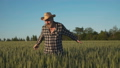 Happy farmer rejoices and caresses the tops of wheat spikes 44409091