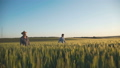 Happy father and son walking on wheat field, rejoicing with outstretched arms 44409096