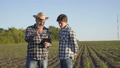 Father and son stand on the corn field, talk and decide the issues with tablet 44409103