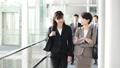 business, coversation, businesswoman 44430705