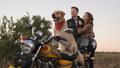 couple, motorcycle, dog 44435934