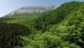 無人機鳥瞰圖新鮮的綠色小山的上升 44454929