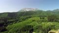 無人機鳥瞰圖在新鮮的綠色大山南牆前 44454932