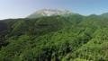 俯視新鮮的綠色大山南牆壁的寄生蟲鳥瞰圖 44454933
