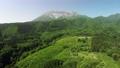俯視新鮮的綠色大山南牆壁的寄生蟲鳥瞰圖 44454934