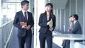boss, business, coversation 44457606