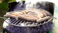 Grilled sausage on the picnic flaming grill 44543832