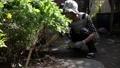 シニア 女性 高齢者の動画 44577912