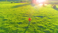 Flight over sporty man running at perfect green grass rural meadow offroad. Sunset in mountain 44582912