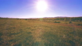FullHD FHD mountain meadow timelapse at the summer. Clouds, trees, green grass and sun rays movement 44582923