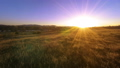 FullHD FHD mountain meadow timelapse at the summer. Clouds, trees, green grass and sun rays movement 44582926