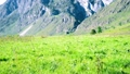 Hiking man walking on green mountain meadow with backpack. Summer sport and recreation concept. 44582945