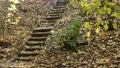 Old stone stairs in the forest in the autumn. Zoom 44601050